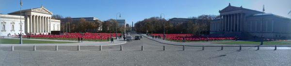 Königlicher Platz mit Mohnblumen
